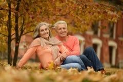 Vieux couples en stationnement Images libres de droits