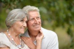 Vieux couples heureux Image stock