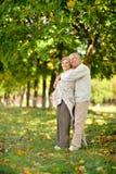 Vieux couples heureux Photo stock