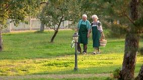 Vieux couples heureux tenant des mains banque de vidéos