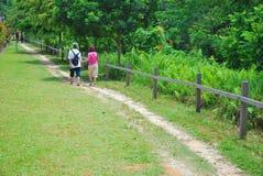Vieux couples marchant un long bout droit de route Image stock