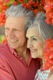Vieux couples sur une promenade d'été Photographie stock libre de droits