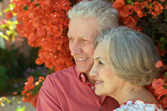 Vieux couples sur une promenade d'été Photos stock