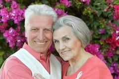 Vieux couples sur une promenade d'été Photos libres de droits