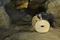 Vieux crâne en caverne avec le vieil outil fait main Photo stock