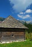 Vieux crayon lecteur abandonné de montagne Photographie stock libre de droits