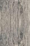 Vieux criqués secs poreux de fond en bois de texture vident la planche naturelle âgée de vintage de couleur matérielle de plan ra Photographie stock