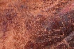 Vieux cuir criqué Images stock