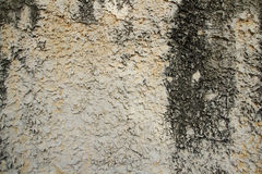 Vieux de beige mur de plâtre rudement Photo stock