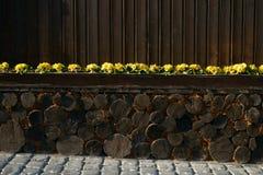 Vieux decking de bois dur ou plancher et usine dans le jardin images libres de droits