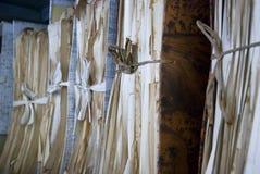 Vieux documents dans les archives dans l'annuaire photographie stock libre de droits