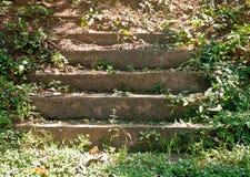 Vieux escaliers Images libres de droits