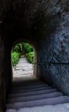 Vieux escaliers Photographie stock