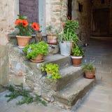 Vieux escaliers en pierre décorés des plantes vertes dans un petit village d'origine médiévale Volpaia, Toscane, Italie photo stock