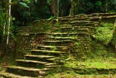 Vieux escaliers en pierre dans Ciudad Perdida, Colombie Images stock