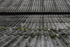 Vieux et couvert d'ardoises onduleuses de toit de mousse verte couvre la grange image stock