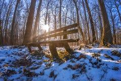 Vieux et en bois banc superficiel par les agents dans la forêt de neige Image libre de droits