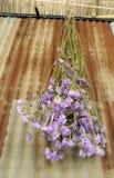 Vieux et rouillé galvanisez le mur et le bouquet sec de fleur images stock