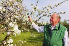 Vieux fermier Photographie stock libre de droits