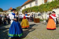 Vieux festival 2014 de vigne photo libre de droits