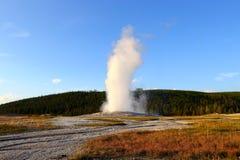 Vieux fidèle en parc national de Yellowstone, Wyoming photos libres de droits