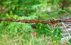 Vieux fil rouillé de bavure entourant cultivant la propriété Photographie stock libre de droits