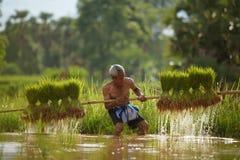 Vieux fonctionnement d'agriculteur photos libres de droits