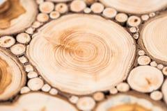 Vieux fond d'arbre Photos libres de droits
