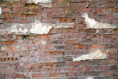 Vieux fond de mur de briques avec des fragments de vieux milieux de plâtre images libres de droits