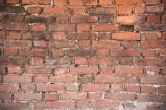 Vieux fond de mur de briques Photo stock