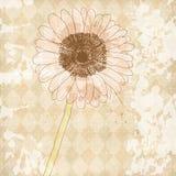 Vieux fond de papier de cru avec la fleur illustration libre de droits