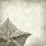 Vieux fond de papier texturisé Image libre de droits