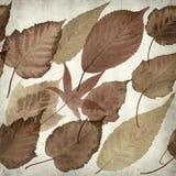 Vieux fond de papier texturisé Photo libre de droits