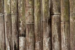 Vieux fond en bambou Photo libre de droits