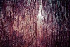 Vieux fond en bois affligé de grunge de planche de conseil Photographie stock libre de droits
