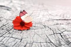 Vieux fond en bois avec l'espace de copie Fleur et papillon Image libre de droits