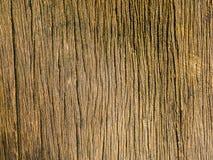 Vieux fond en bois sec Texture en bois sèche naturelle photo stock
