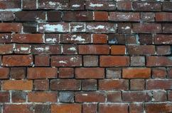 Vieux fond rouge de texture de mur de briques Photographie stock libre de droits