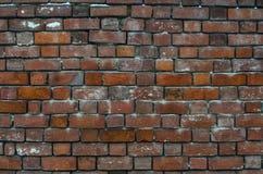 Vieux fond rouge de texture de mur de briques Photos stock