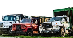 Vieux Ford Trucks photo libre de droits