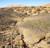 vieux fossile en de sert du Maroc Sahara et du ciel en pierre de roche Photo libre de droits