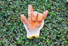 Vieux gants en caoutchouc pour l'amour Photo libre de droits
