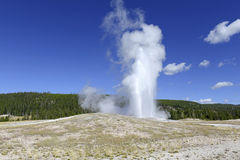 Vieux geyser fidèle, parc national de Yellowstone, Wyoming Images stock