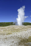 Vieux geyser fidèle, parc national de Yellowstone, Wyoming Photo stock