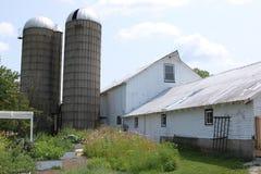 Vieux granges et silos blancs Photos stock