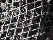 Vieux gril en métal en Web Photo stock
