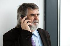 Vieux hommes élégants parlant au téléphone portable Photo libre de droits
