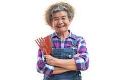 Vieux jardinier asiatique heureux sur un blanc Photographie stock