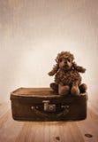 Vieux jouet sur une petite valise de route Image stock