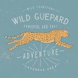 Vieux label avec le guepard courant Photographie stock